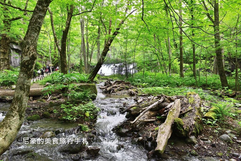 奧入瀨溪1