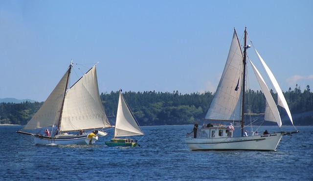 Birder Boat 'tween the, Nikon COOLPIX S10