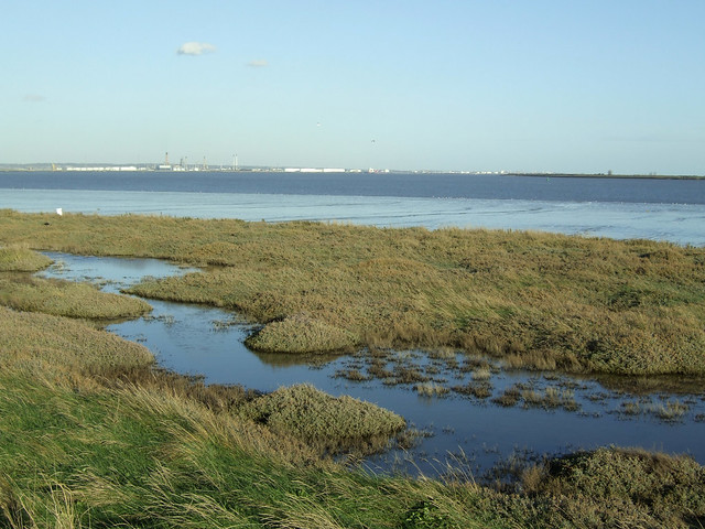 East Tilbury Marshes