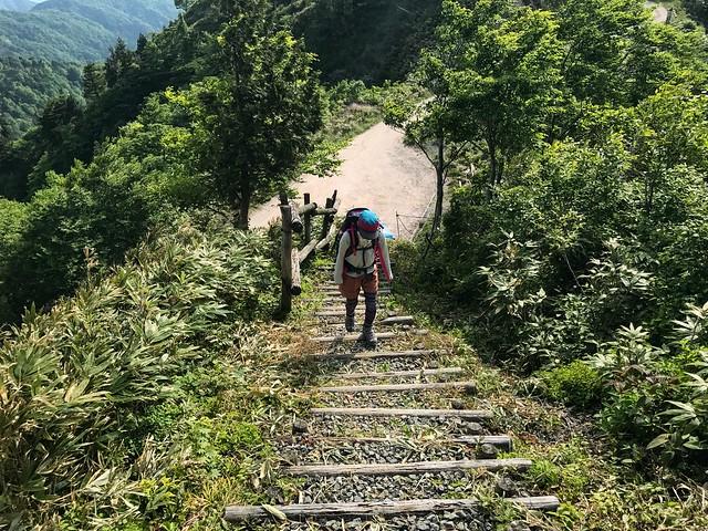 鷲ヶ岳 桑ヶ谷ルート 登山道 急登 しな