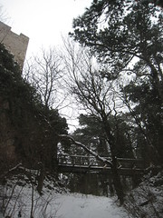 IMG_8545 Brücke zur Ruine Rauheneck, 24.1.2010