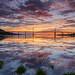 A Kessock Sunrise .. by Gordie Broon.