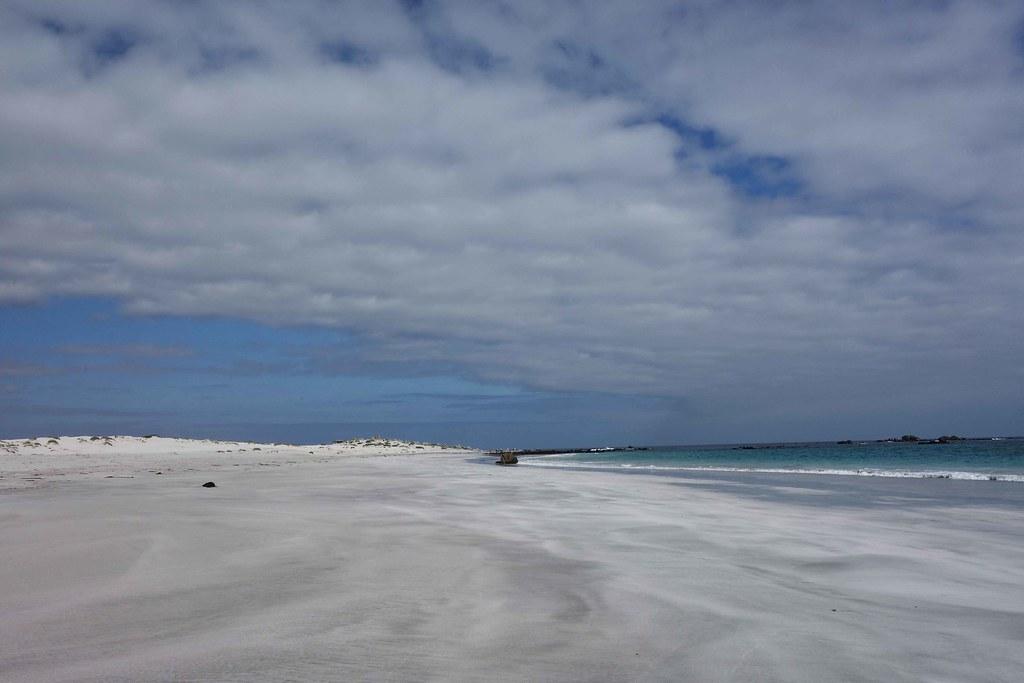 Region III - Llanos de Challe - Playa Blanca 1