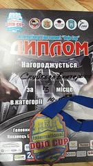 Международный турнир WKF «International Dojo Cup»46