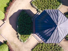Rose Garden at Volkspark Altona High Angle View Plant Architecture Day Tree Grass Outdoors Built Structure Building Exterior Growth No People Nature Dronephotography at Altonaer Volkspark