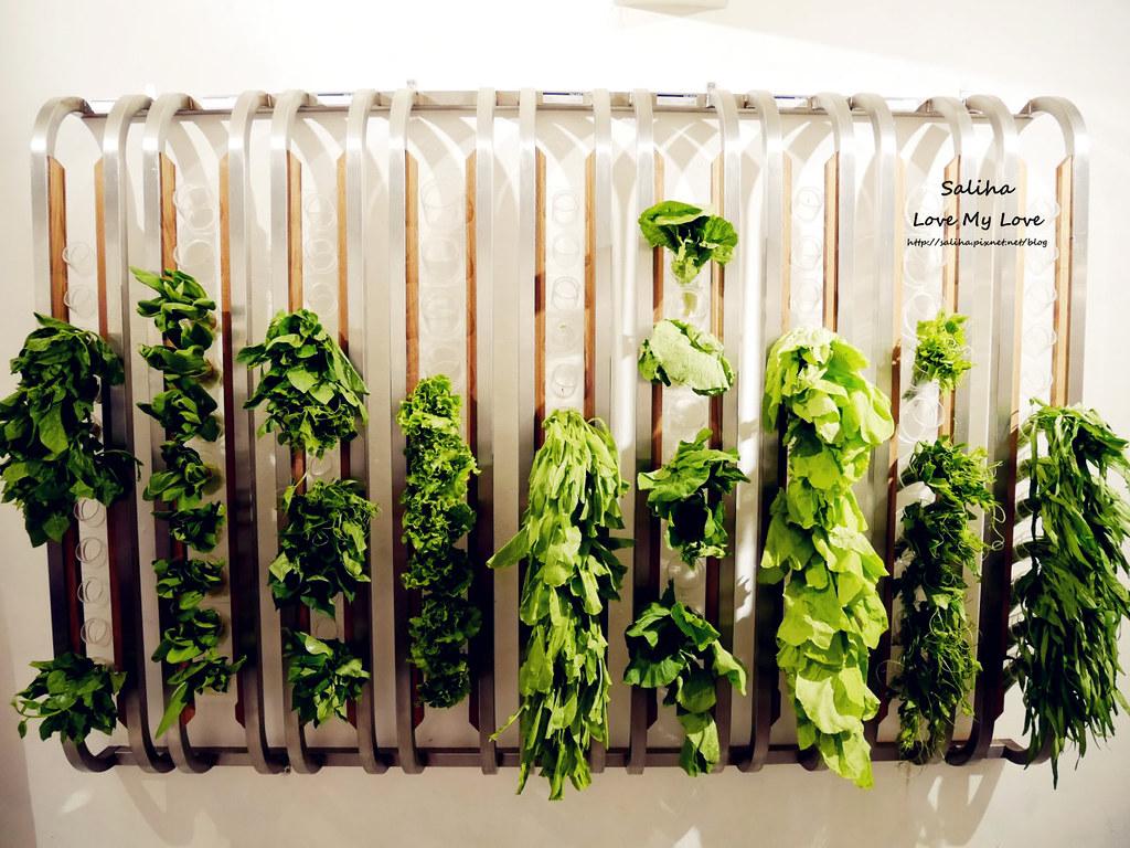 台北華視附近素食餐廳美食推薦VEGE CREEK 蔬河 (2)