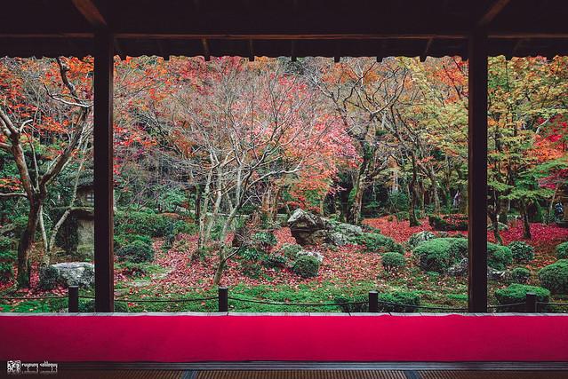 十年,京都四季 | 卷三 | 古都日常 | 03