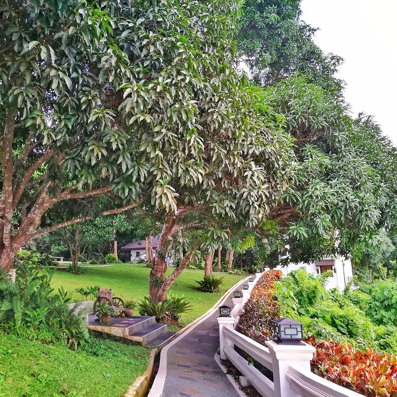 Mertola's farm resort | www.wearejuanderers.com