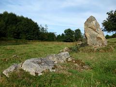 L'alignement de menhirs de la Bouaderie près de Gosné - Ille-et-Vilaine - Septembre 2017 - 07 - Photo of Liffré