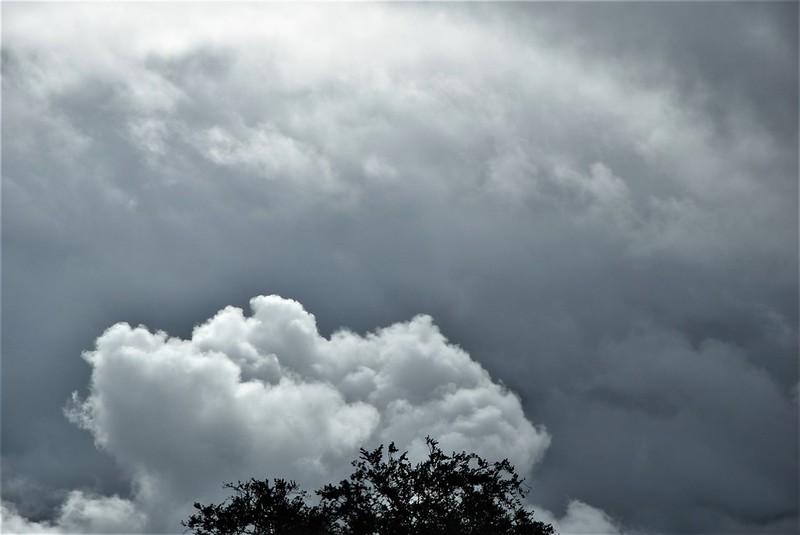 Clouds 18.09 (12)