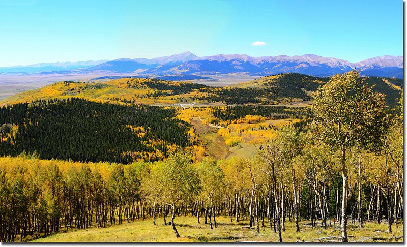 Fall colors, Kenosha Pass  (50)