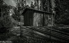 Iron Age Village-12