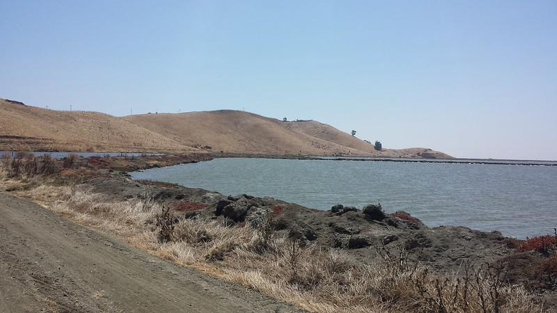 Riding in the salt flats, Coyote Hills Park