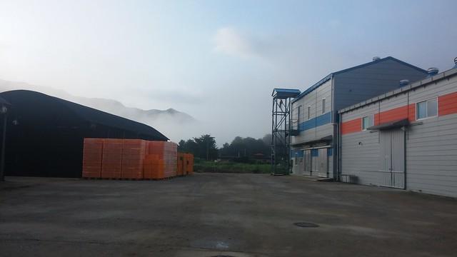 오미자 공장