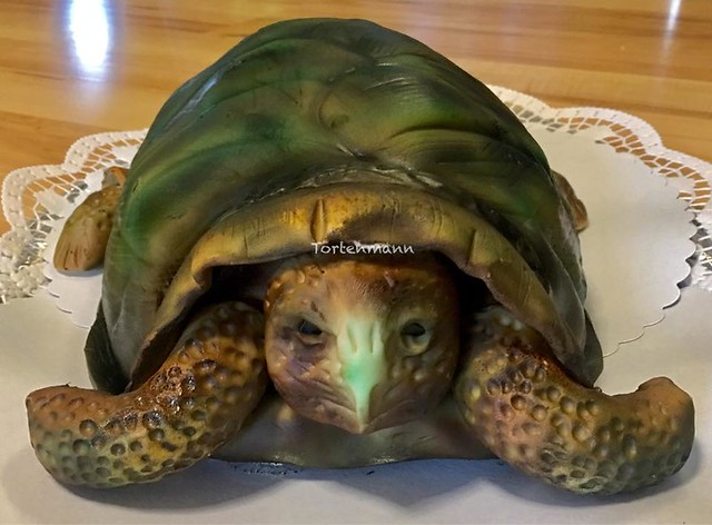 Amazing Turtle Cake by Tortenmann