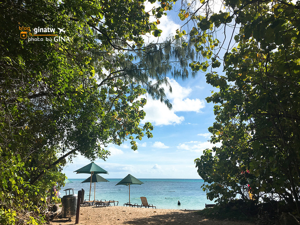 【凱恩斯自由行】大堡礁大冒險號(GREAT ADVENTURES)超級美的外島-澳洲綠島(AU Green Island) 外堡礁(OUTER GREAT BARRIER REEF) @GINA環球旅行生活|不會韓文也可以去韓國 🇹🇼