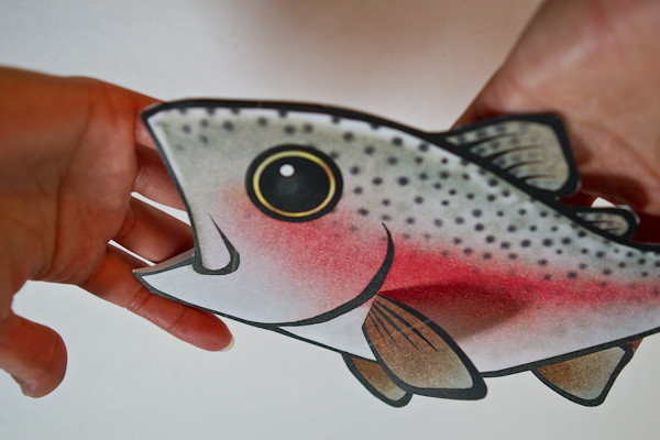 Rainbow Trout Gift Card Holder