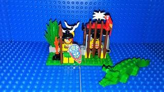 6246 Crocodile Cage