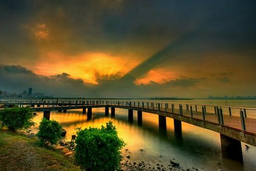水莎蓮 ~ 光芒耀山河