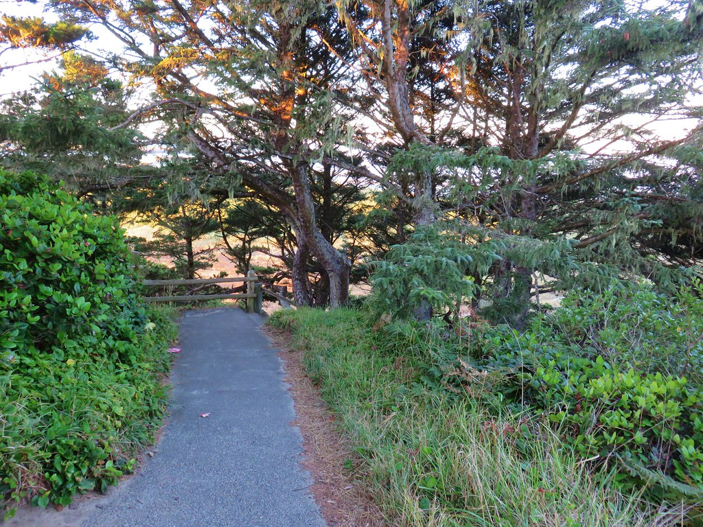 Trail from Yaquina Bay Lightouse to the ocean