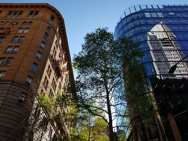 Sydney CBD Old and new Architecture plus Trees - Samsung Galaxy Note 8 photo example.jpg (2)