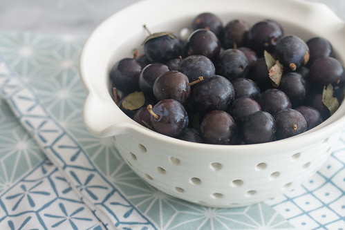 Bowl of Damson Plums