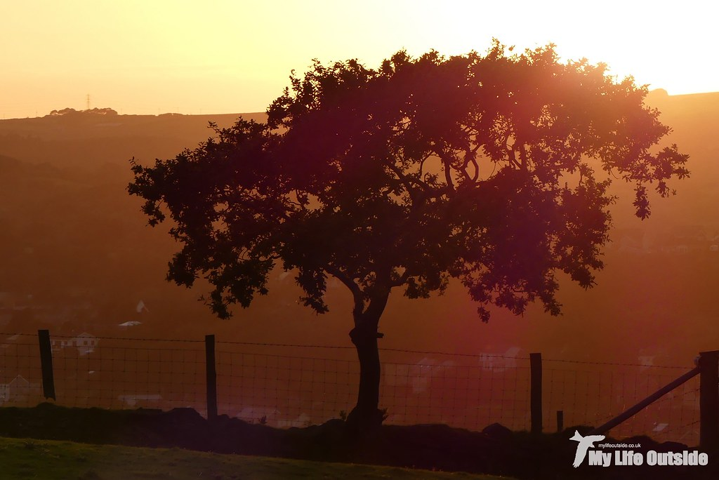 P1120113 - Sunset