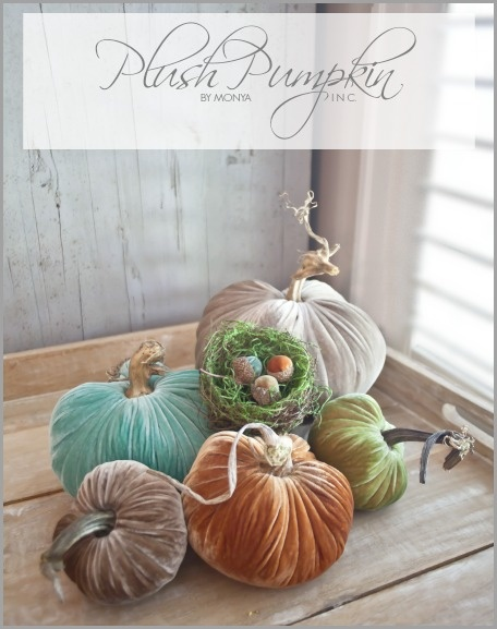 Plush-Pumpkin-Graphic-bHOME-2