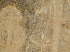 Some of the petroglyphs have weathered beyond recognition