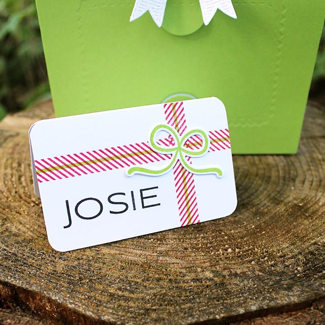 Josie's Gift Bag 4