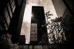 The Toronto-Dominion Centre