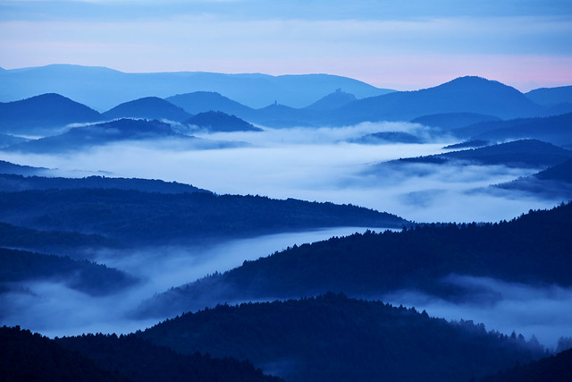 Palatinate Forest, Canon EOS 5D MARK II, Tamron SP 70-300mm f/4.0-5.6 Di VC USD