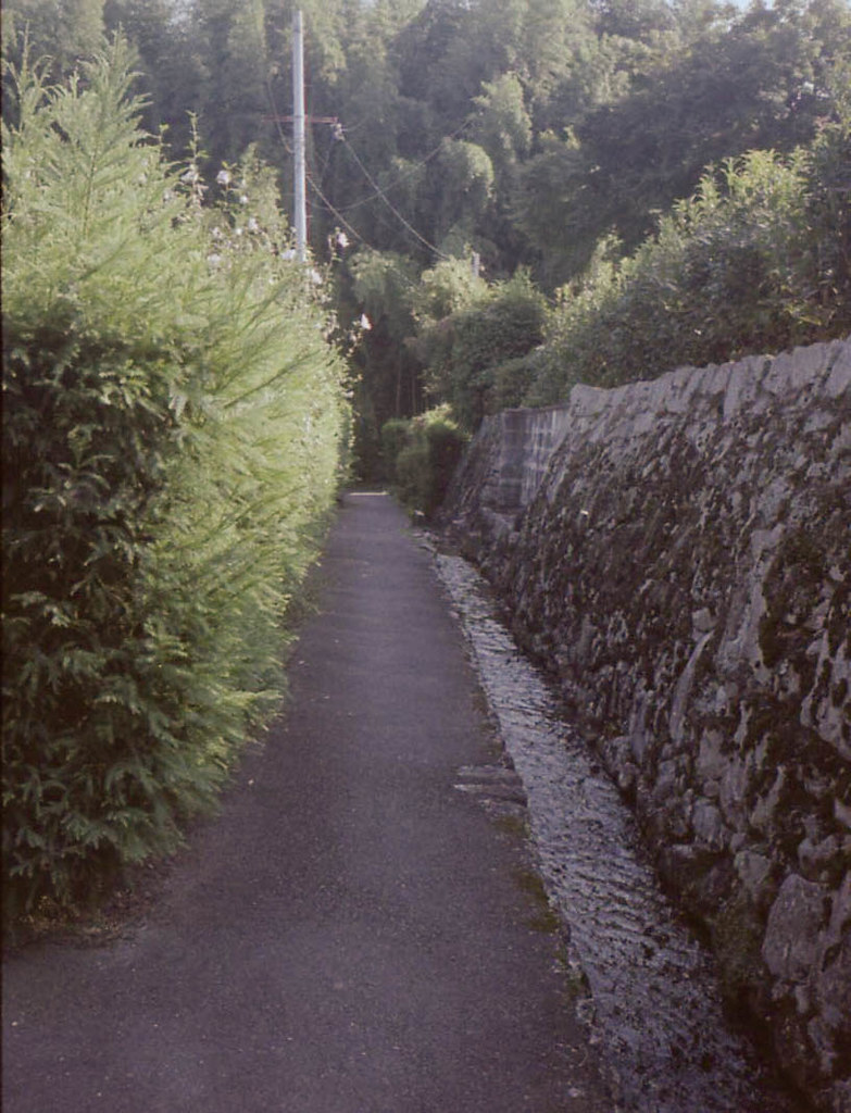 color-19830-2.jpg