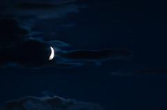 luna - Photo of Lacoste