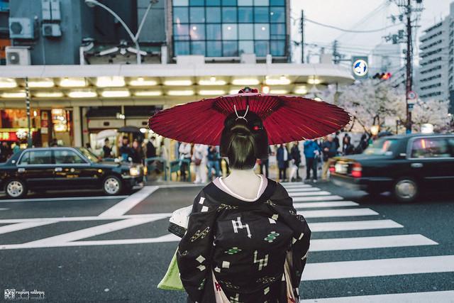 十年,京都四季 | 卷四 | 那兒春色滿城 | 13