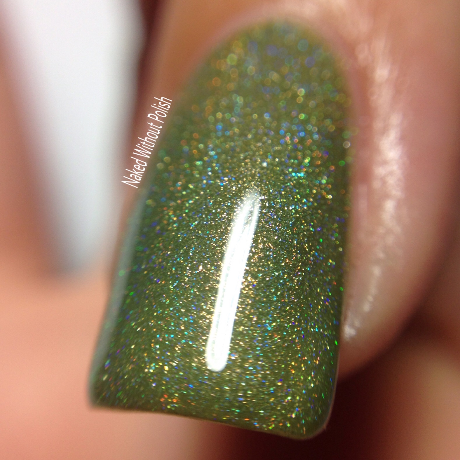 LynBDesigns-Why-Not-Take-Olive-Me-9