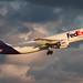 N731FD FedEx Express A300B4-605RF at KCLE by GeorgeM757