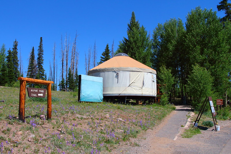 IMG_4880 Alpine Pond Trail, Cedar Breaks National Monument