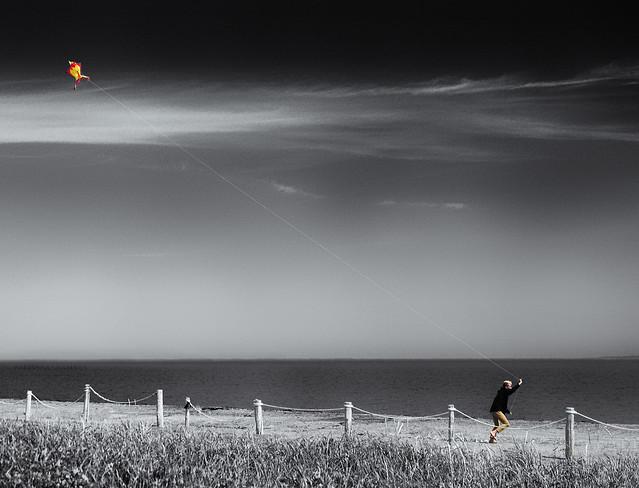 It's summertime: go fly a kite!