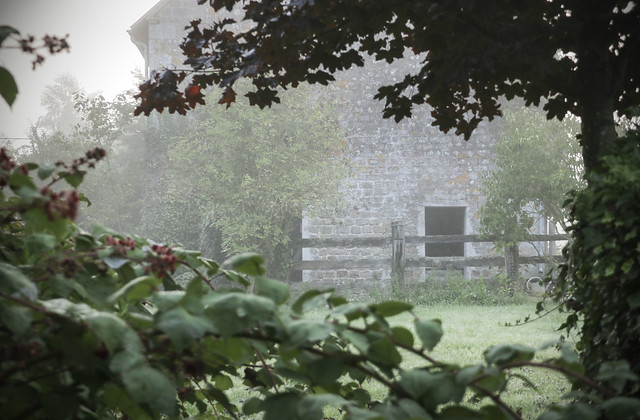 Foggy morning - le Chateau garden