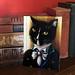 Mr Darcy Tuxedo Cat Portrait