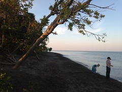 Point Pelee beach