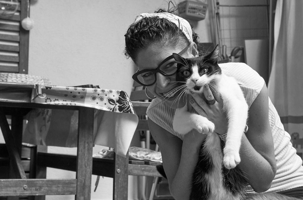 Àlex BN i els gats 23
