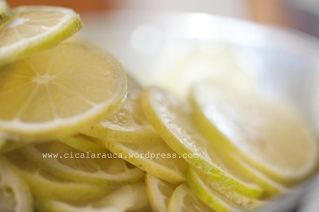 limoni affettati a macchina