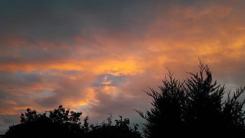 Elsass morning sky