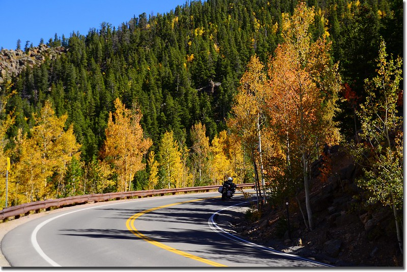 Fall colors, Mount Evans Scenic Byway, Colorado (40)