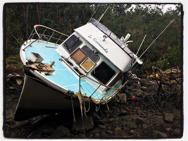 161/365 • a very sad boat at the back of Nara Inlet - we left Airlie Beach yesterday morning, with provisions, fuel and water for a few weeks. We arrived in Nara Inlet after lunch - it was very beautiful, except for this poor boat. We did a bit of explori