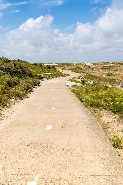 Radweg durch die Dünen