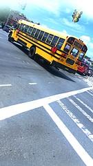2009 Bluebird Vision, Consolidated Bus Transit, Bus#39269, Air Brakes, AC, Wheelchair Accessible, No Air Ride. No Radio.