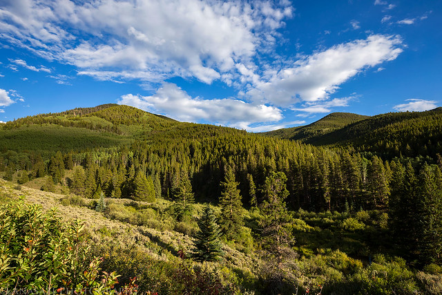 Marshall Pass Hills